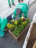 TAFLAN - İzmit'te Cami Bahçeleri Çiçeklerle Donatılıyor