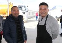 YENI YıL - Çinli Ve Türk İşçiler 'Korona Virüsü'ne Aldırmadan Çalışıyorlar
