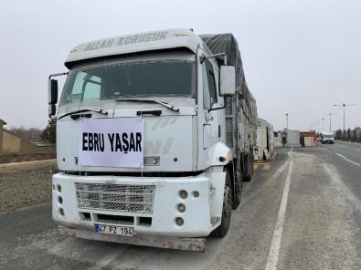 Sanatçı Ebru Yaşar Depremzedeleri Unutmadı