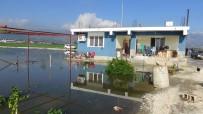 MUSTAFA KAPLAN - Amik Ovası'nda Evler Ve Tarım Arazileri Sular Altında Kaldı