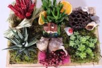 MINIMALIST - Renk Renk Saksı Çiçekleriyle Evinizin Havasını Değiştirin