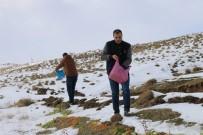 NEMRUT DAĞI - Tatvan'da Yabani Hayvanlar İçin Doğaya Yiyecek Bırakıldı