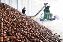 İZMIR TICARET ODASı - Yaş Meyve Sebze İhracatçılarının 2020 Hedefi 1 Milyar Dolar İhracat