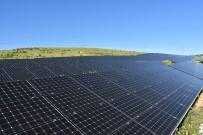 ENERJİ SANTRALİ - Harran Üniversitesi Kendi Enerjisini Üretiyor