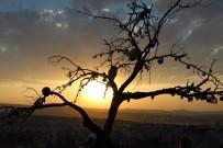 Kapadokya'dan Kartpostallık Gün Batımı Fotoğrafları
