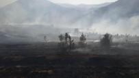 Kayseri'de Çıkan Yangında 20 Hektarlık Alan Kül Oldu