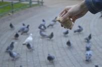 Kuşlar Yemlerinden, Satıcılar Ekmeğinden Oldu