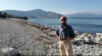 Eğirdir Gölü İçin Bakanlık Ve DSİ'ye Rapor Sunulacak