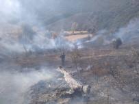 Tunceli'de İki Noktada Yangın Çıktı