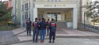 400 Kilo Sarımsak Çalan 2 Kişi Şüpheli Jandarma Ekiplerince Yakalandı