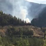Artvin'in Murgul İlçesinde Örtü Yangını