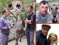 SOSYAL MEDYA - Köy hayatını sevdiren Youtube videolarıyla fenomen olan Orhun Topkaya kimdir? Nereli, İletişim...