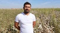 Üç Kuşaktır Pamuk Ektikleri Tarlada Verim Artışı Çiftçiyi Sevindirdi