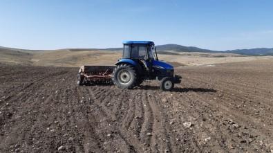 Afyonkarahisar'da Tohum Toprakla Buluştu