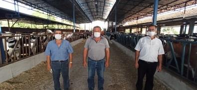 Süt Üreticileri, Fiyat Artışı İstiyor