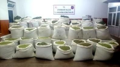 Diyarbakır'da 994 Kilo Esrar, 247 Bin Kök Kenevir Ele Geçirildi