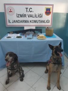 Jandarmadan 6 İlçede Uyuşturucu Operasyonu Açıklaması 6 Gözaltı