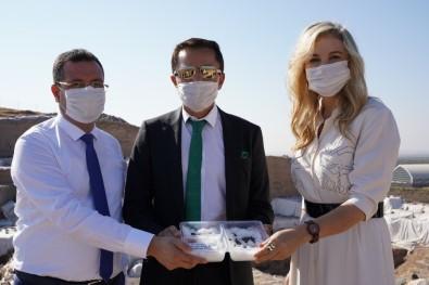 Sanayi Ve Teknoloji Bakanlığı Himayesinde 'Kilis Yağlık Zeytini' Tanıtım Günü