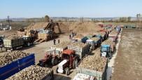 Kastamonu'da Çiftçilerin Zorlu Pancar Mesaisi Devam Ediyor