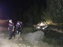 Ceyhan'da Trafik Kazası Açıklaması 2 Ölü, 1 Yaralı
