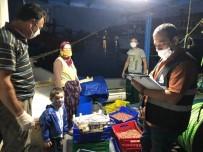 Erdek'te 'Yasak Tür Ve Balık Boyu' Denetimi
