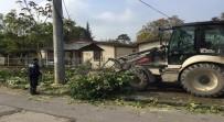 Düzce Belediyesi Moloz Atıkları Toplanıyor
