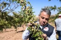 Şahin, 'Amacımız Teknik Tarım İle Katma Değeri Yüksek Ürünler Üretmek'