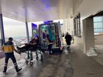 Çilimli'de Mantardan Zehirlenen Kadın Hastaneye Kaldırıldı