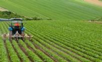İNGILTERE - Tarımda flaş yıllık artış!