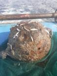 Balıkçıların ağına mayın takıldı