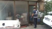 Tuzla'da Yaklaşık Bir Ton Çürümüş Balık Yakalandı