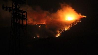 Bakan Pakdemirli'den Hatay'daki orman yangınına ilişkin açıklama! Kontrol altına alındı...