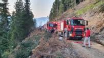 Vali Taşbilek Açıklaması 'Örümcek Ormanları'ndaki Yangın Kontrol Altına Alınma Seviyesinde'