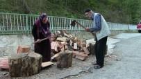 Yaşlı Çift Kışlık Odun İhtiyaçlarını Kendileri Karşılıyor