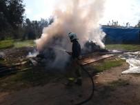 Burhaniye'de Yonca Balyaları Yandı