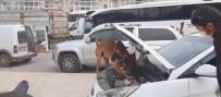 Kocaeli TEM'de Durdurulan Aracın LPG Tankından 14 Kilo 700 Gram Esrar Çıktı
