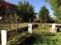 Yenice'de İsimsiz Mezarların Sırrı Aydınlatıldı
