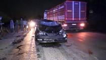 Düzce'de İneklere Çarpan Otomobildeki İki Kişi Yaralandı