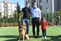 Hayvanları Koruma Günü'nde Pendik'te Neşeli Patiler Köpek Eğitim Parkı Açıldı