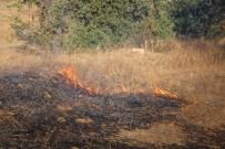 Kula'da Çıkan Yangında 10 Dekar Anız İle 5 Dekar Makilik Alan Zarar Gördü