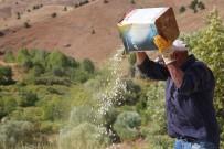Ata Tohumlarıyla Üretilen Kuru Fasulye, Rüzgar Çağrılarak Ayıklanıyor