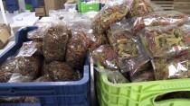 Kadın Girişimci, 'Atalık' Tohumlardan Düşük Glütenli Makarna Üretiyor