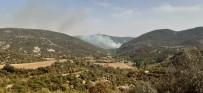 Manisa'da 8 Hektar Ormanlık Alan Yangında Kül Oldu