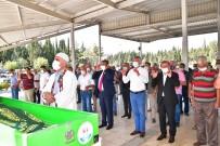 Öldürülen Hülya Güllüce'nin Cenazesi Toprağa Verildi