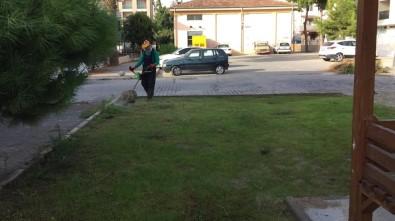 Akbük Ve Altınkum'da Park Ve Yeşil Alan Temizliği Yapıldı