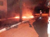 Burhaniye'de Yazlıkların Yanında Çıkan Ot Yangını Korkuttu