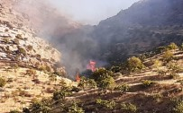 Fıstık Tarlasında Çıkan Yangın Söndürüldü