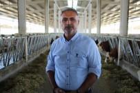 Gurbeteyken Tarım Ve Hayvancılık İçin Türkiye'ye Döndü
