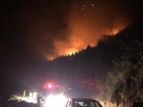 Kastamonu'da Yangın Yerleşim Yerlerini Tehdit Ediyor