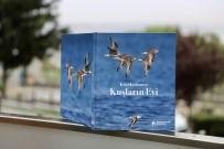 Küçükçekmece Gölü'nde Yaşayan 166 Kuş Türü Kitapta Toplandı